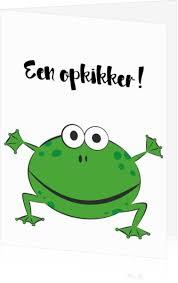 Stichting Opkikker
